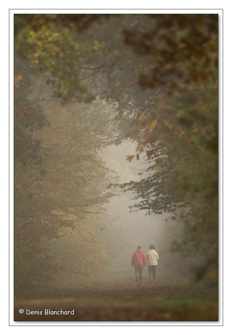 Promeneurs en Forêt de Chambier